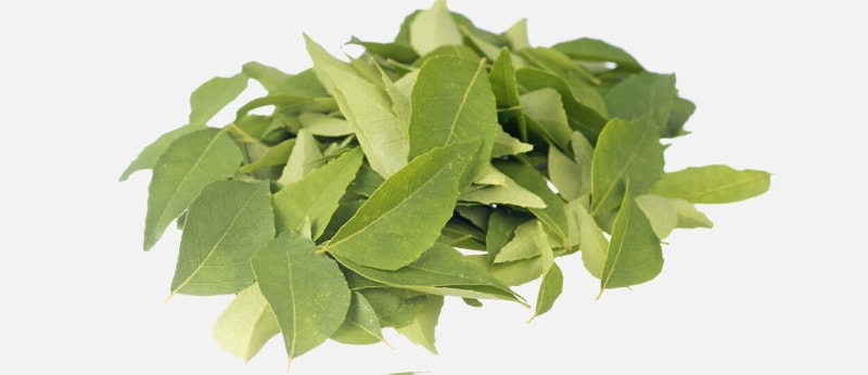 Curry leaves against gray hair