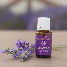 Lavender oil in a bottle