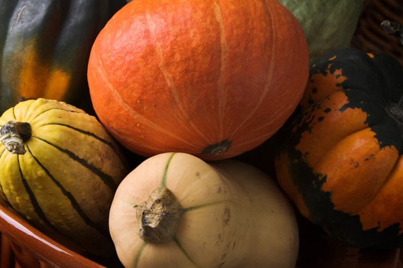 Squash Anti-Inflammatory Food